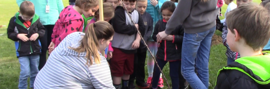 High schoolers and elementary schoolers dig a hole to plant a tree in.
